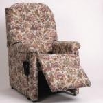 Dalerise Rise & Recline chair